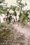 7333 Darell Wigley on a BSA Golden Flash 650 twin in the Mukuvisi Woodlands