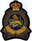 BSAP BLAZER BADGE